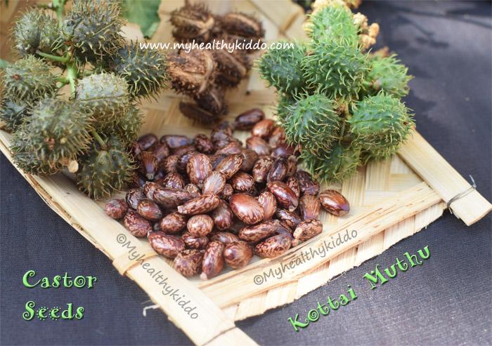 castor seeds - kottai muthu